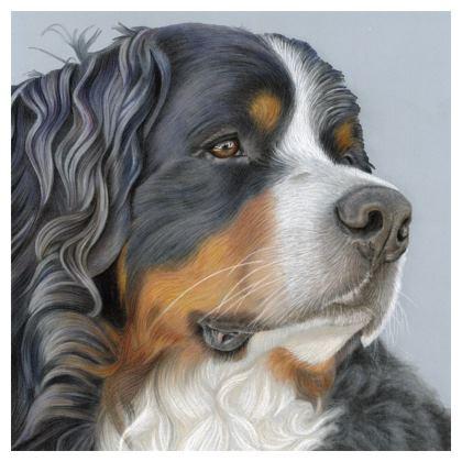 Bernese Mountain Dog Cushion - Regal