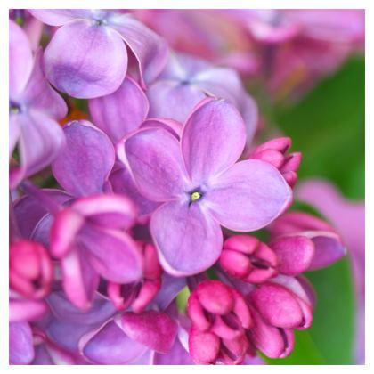 purple flowers loafer espadrilles