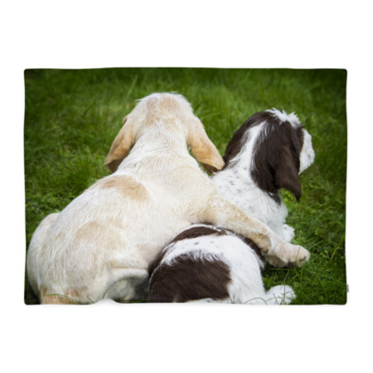 Italian Spinone Puppy Dog Fleecy Blanket