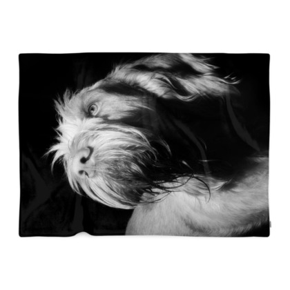 Italian Spinone Dog Fleecy Blanket