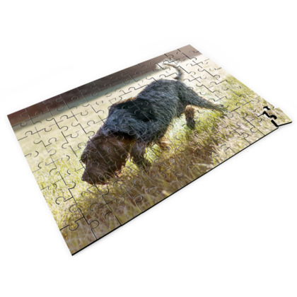 Brown Roan Italian Spinone Dog Jigsaw Puzzle