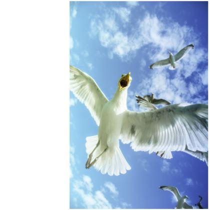 Brighton Seagull Deckchair