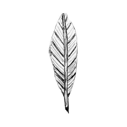 Black and White Feather Coasters