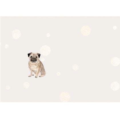 Pug Dog- Face Mask