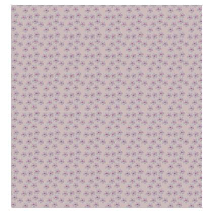 Cherry Blossom Kimono Jacket