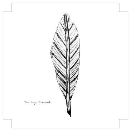 Black and White Feather Square Canvas