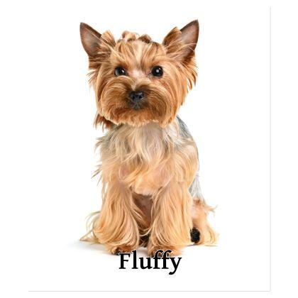Functional & Noticeable Personalised Shoulder Bag!