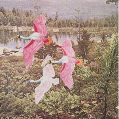 Velvet Cushion Flight of the Spoonbills
