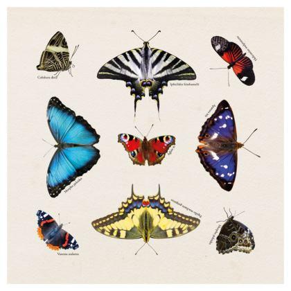 Luxury cushion - Mirrored Butterflies