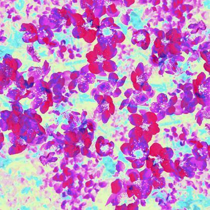 Kimono Jacket Red Spring Flowers