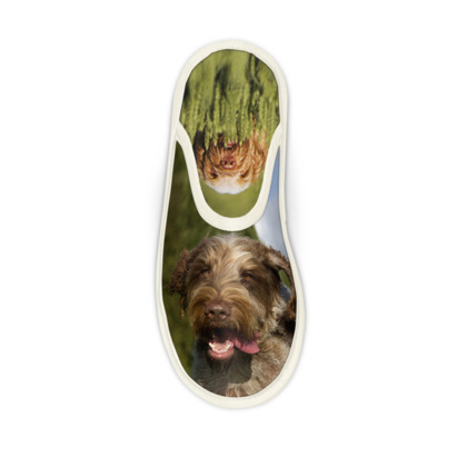 Italian Spinone Slippers