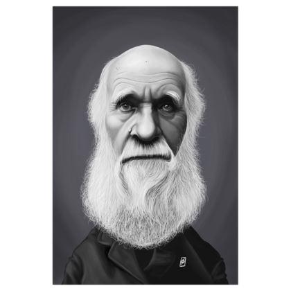 Charles Darwin  Celebrity Caricature Art Print