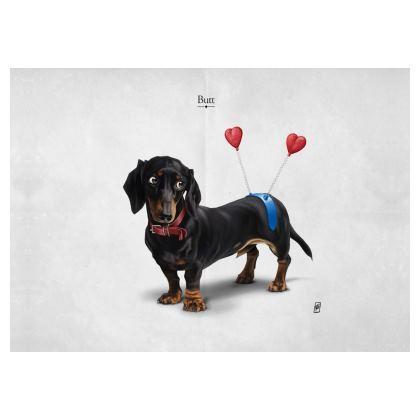 Butt ~ Title Animal Behaviour Art Postcard