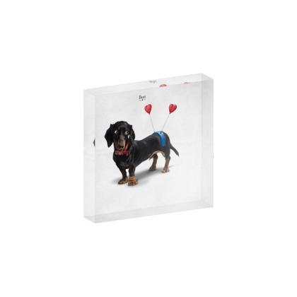 Butt ~ Title Animal Behaviour Acrylic Photo Blocks