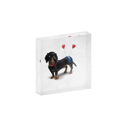 Butt ~ Wordless Animal Behaviour Acrylic Photo Blocks