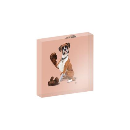 The Boxer ~ Colour Animal Behaviour Acrylic Photo Blocks