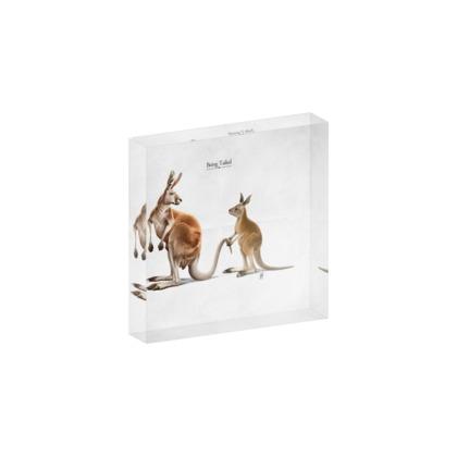 Being Tailed ~ Title Animal Behaviour Acrylic Photo Blocks