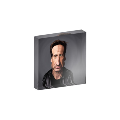David Duchovny Celebrity Caricature Acrylic Photo Blocks