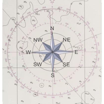 Luxury Cushion Compass Points design