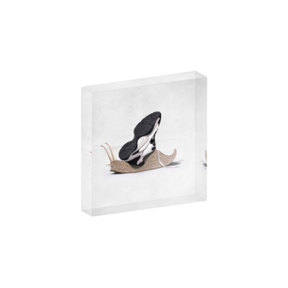 The Sneaker ~ Wordless Animal Behaviour Acrylic Photo Blocks
