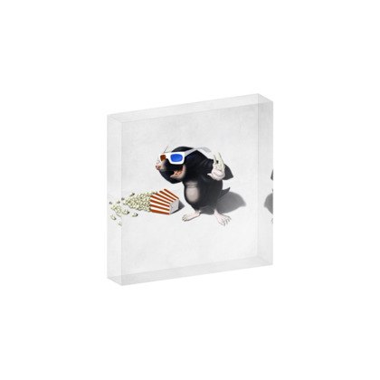 3D ~ Wordless Animal Behaviour Acrylic Photo Blocks