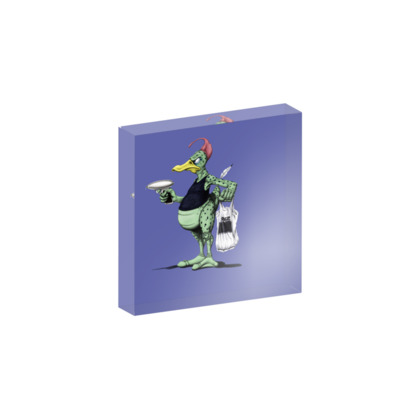 Space Duck ~ Colour Animal Behaviour Acrylic Photo Blocks