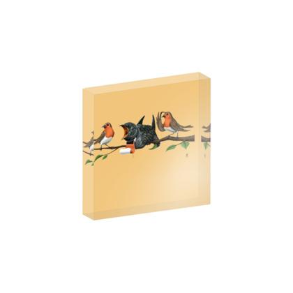 Cock Robin ~ Colour Animal Behaviour Acrylic Photo Blocks