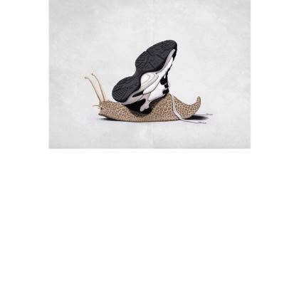 The Sneaker ~ Colour Animal Behaviour Art Postcard
