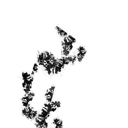 Black bud flower print Slip Dress
