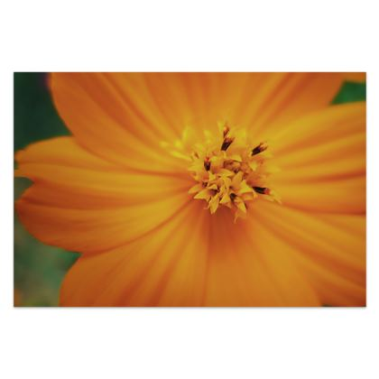 Orange Cosmos - Sarong