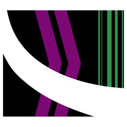 Flared Skirt - Minimal 1