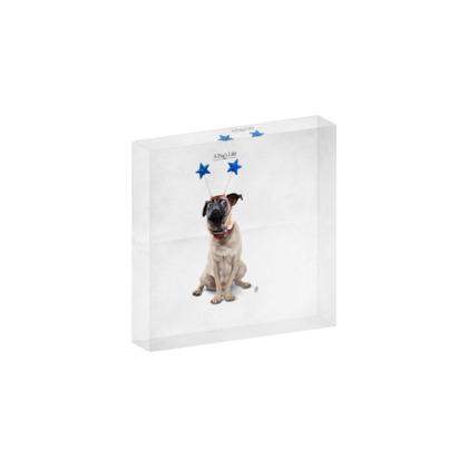 A Pug's Life ~ Title Animal Behaviour Acrylic Block