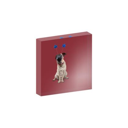 A Pug's Life ~ Colour Animal Behaviour Acrylic Block