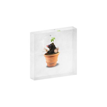 Pot ~ Title Animal Behaviour Acrylic Block