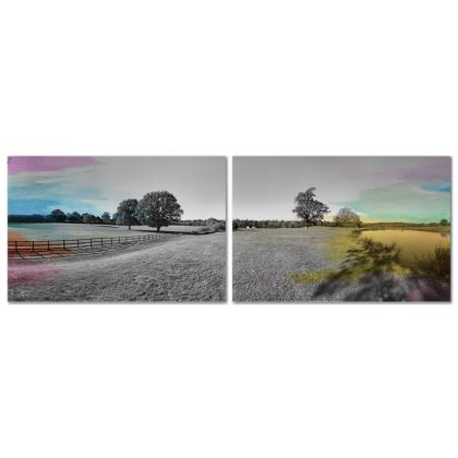 Two Panel Canvas- Colour Field