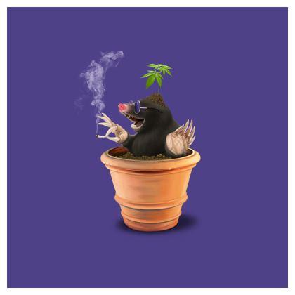Pot ~ Colour Animal Behaviour Cushion