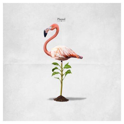 Planted ~ Title Animal Behaviour Cushion