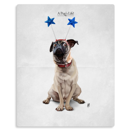 A Pug's Life ~ Title Animal Behaviour Metal Print