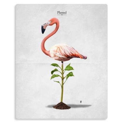 Planted ~ Title Animal Behaviour Metal Print
