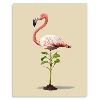 Planted ~ Colour Animal Behaviour Metal Print