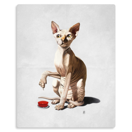 Cat-astrophe ~ Wordless Animal Behaviour Metal Print