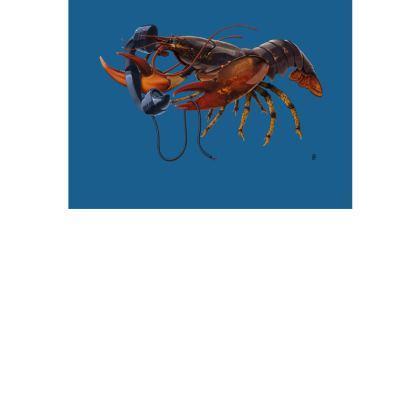 Calling Salvador ~ Wordless Animal Behaviour Art Postcard