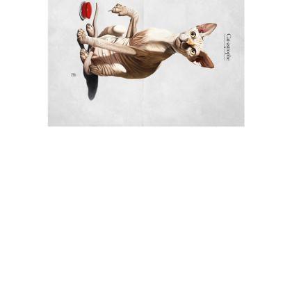 Cat-astrophe ~ Wordless Animal Behaviour Art Postcard