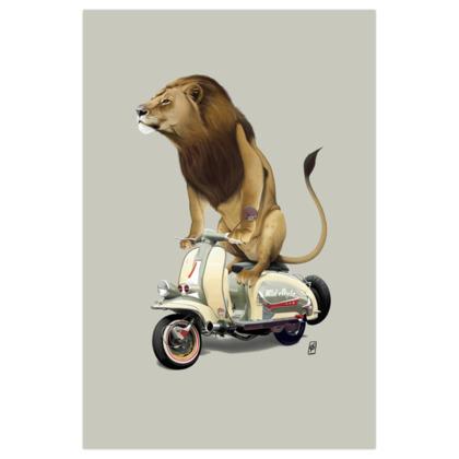 Lamb ~ Colour Animal Behaviour Art Print