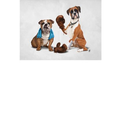 Raging ~ Wordless Animal Behaviour Art Postcard