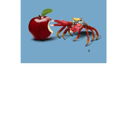 Core ~ Colour Animal Behaviour Art Postcard