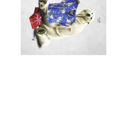 Cool! ~ Title Animal Behaviour Art Postcard