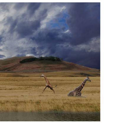 Mens Swimming Shorts -Savannah Wildlife