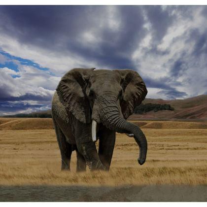 Strapless Swimsuit - Savannah Wildlife
