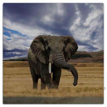 Picnic Blanket - Savannah Wildlife